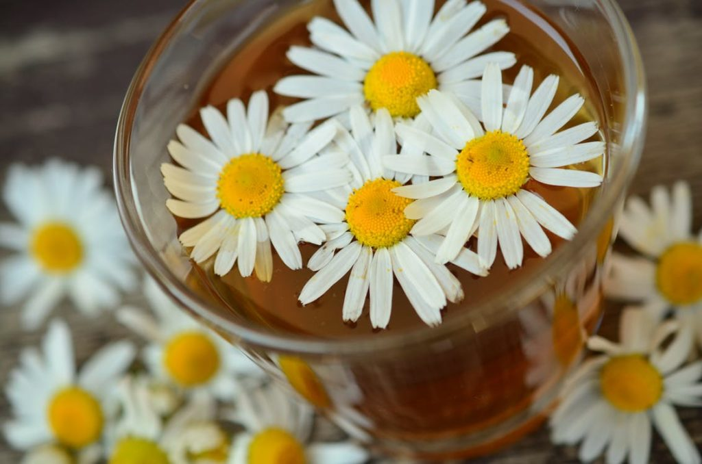 4 herbs that cure common skin issues